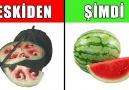 Bir zamanlar başka şimdi bambaşka görüntüde olan 10 meyve