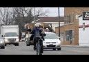 Bisikletle Geyik Taşımak