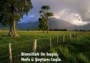 BİSMİLLAH -ÇOK GÜZEL BİR İLAHİ [ İLAHİ DÜNYASI ]