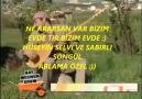 Bizim türküler - Bizim türküler Facebook