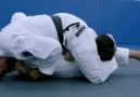 Bjj Tips - Renzo Gracie - Arm Lock From Side Control Facebook