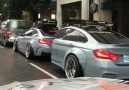 BMW Fans - It&becoming a trend!