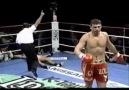 Boks, Kıck boks ve Serbest Dövüş ..... Nakavtlar