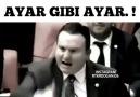 Bordo Bereliler - HDPLİLERİ MECLİSTE REZİL ETTİ HELAL...