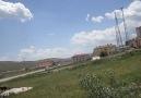 bozdumanlı eke dişi fişek-2(21.05.2013)