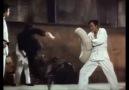 Bruce Lee - 78th Birthday - November 27Video Bruce Lee Tribute 2018