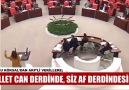 BURCU KÖKSALIN AKP&VEKİLLERİ... - Değişimin ANA GÜCÜ