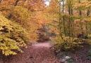 Bursa Yaşam - Bursa&sonbaharın renkleri Murat Tuban