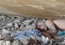 Bu video içinizi sızlatacak! Suriye'de yaşanan acının tablosu  18