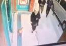 Çağrı Taner Video - Marketin önünde herkese saldıran kedi D Facebook