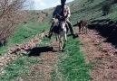 ÇAKMA ERTUĞRUL GAZİ.. TAKLİTLERİNDEN SAKINALIM..