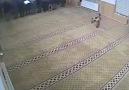 Camiye çocuk şoku