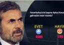 CANLI ANKET Fenerbahçenin başına Aykut Kocamanın gelmesini ister misiniz