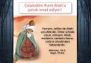 Celaleddin Rumi gerçekleri