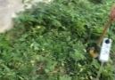 Cemal Açar - İspiral-Taşlama motorundan Tırpan yapımı Facebook