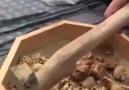 Cevizzzz nasiiiiii kirılir görün bakin - Karadenizliler Buraya