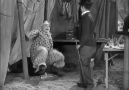 Charlie Chaplin Fun - Charlie Chaplin The Circus Movie funny Clip Facebook