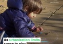 Children now spend half their time on structured activities.Read more