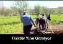 Çiftçinin Türküsü: Tayyip Büktü Belimi turkusu