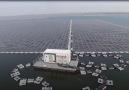 Çinde neden yüzen güneş panelleri yapılıyor