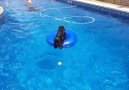 Clever dog uses pool toy as a boat to fetch his ball