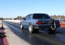 Close call Mustang wheelie
