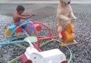 Çocuklar eğleniyor :)