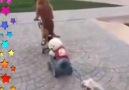 Cocukları parka götürürken