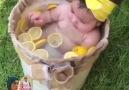 Çok tatlısın sen limon - Gurbet kuşlari 36