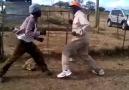 Combat de lanne ne pas rater du jamais vu