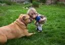 Com certeza o Melhor amigo do Homem !!