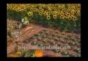 Çorumlu Şakir Şhrek 2. Bölüm