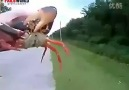 Crab bites nose! Ouch!