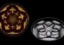 Cymatic Visualization: Slow Motion