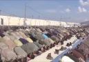 Dadaşlar - Şu kopan fırtına islamın Türk ordusu senin son...