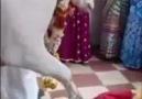Deng HAZAR - Hindistan &şifa dağıtan bir şehy .....