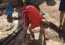 dirt   water = MUD !!!!