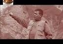 Diyarbakır Ofis - Hozan Dino - Oy Yare