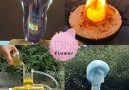 DIY Flower - 5 Amazing Science Experiments! Facebook