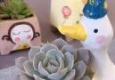 DIY Flower - DIY cute ceramic utensils Facebook