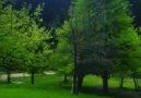 Doğa cenneti Şavşat Karagöl