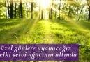 Doğan Cüceloğlu - ÖZLEMLERİMİZ ŞİİRDEBenim çok hoşuma...