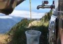 Doğa Severler Kulübü - Çay molası
