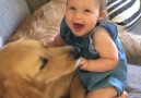 Dogs and kids growing up together this is what the world needs right now