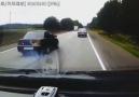 Don't drive stupid