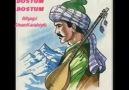 DOSTUM DOSTUM / Türk Halk Müzigi