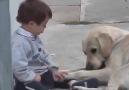 Down sendromlu çocuk ve onu çok seven sıkı dostu.