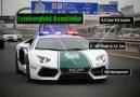 Dubaı Police Cars