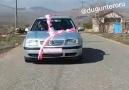 Düğün Terörü - 5 lira için PUBG&vurulmuşa dönen eleman....