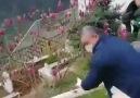 Dün nedeniyle vefat eden... - Balıkesir Postam Gazetesi